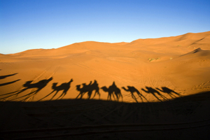 CARAVAN IN THE DESERT © Jeppo75 | Dreamstime.com