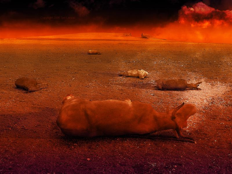 THE LIVESTOCK PLAGUE- ©2005 Ted Larson