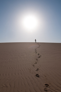 FOOTPRINTS IN THE SAND- © Hilderoegeberg | dreamstime.com
