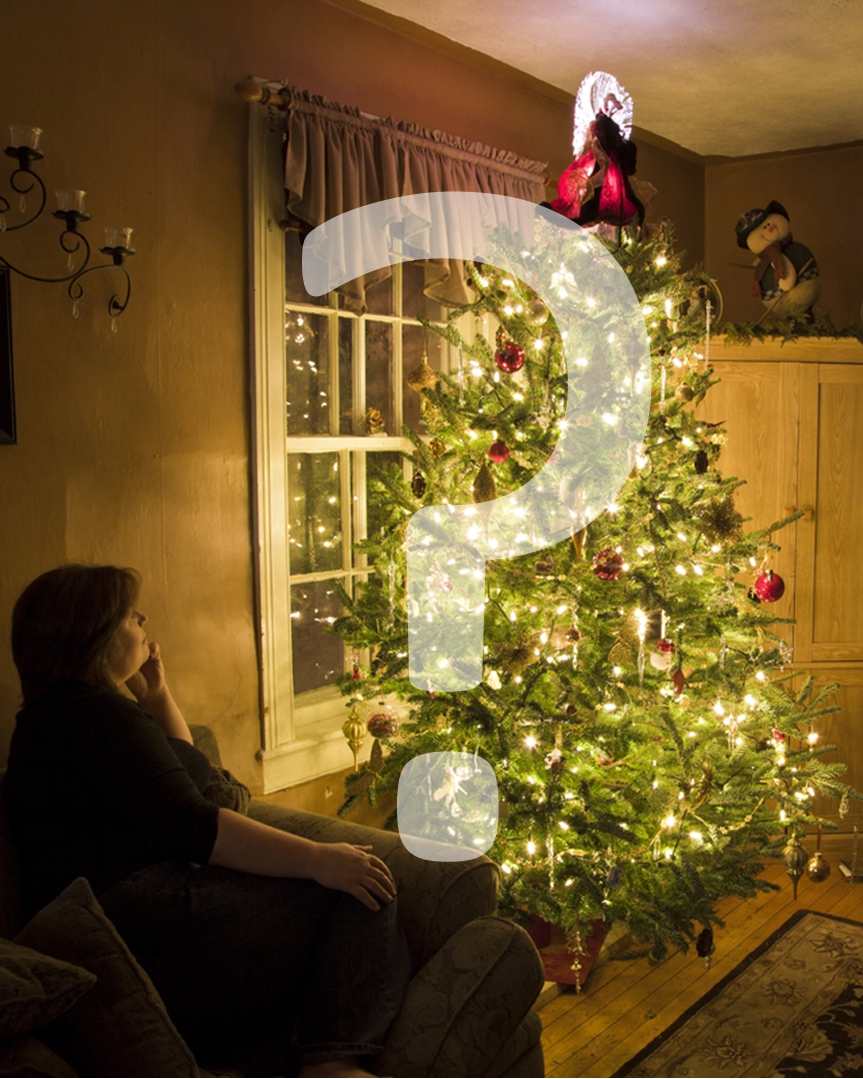 Why do we decorate christmas trees and use christm photograp for What do we use trees for
